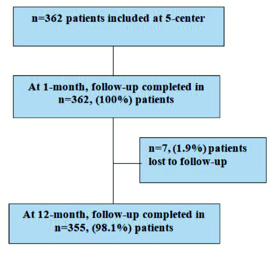 Clinical Outcomes of Novel Long-Tapered Sirolimus-Eluting